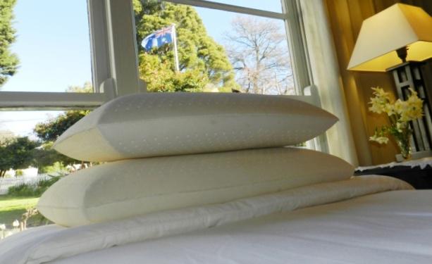 TLC Latex Pillows